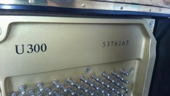 u300-2.jpg